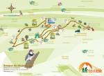 ruta bosque de mojonovalle canencia_Madrid10