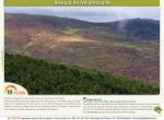 ruta bosque de mojonovalle canencia_Madrid4