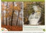 ruta bosque de mojonovalle canencia_Madrid5
