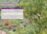 ruta desde caleao al lago ubales por la senda de los arrudos15