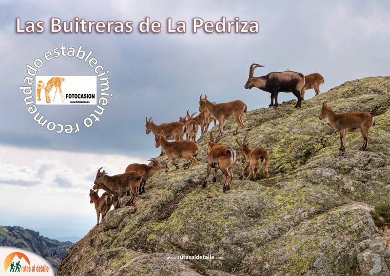 Ruta Las Buitreras de la Pedriza