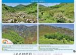 ruta cabeza larcu desde caleao en asturias7