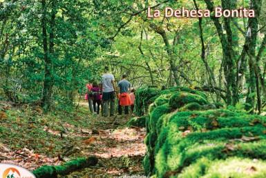 Ruta de La Dehesa Bonita-Madrid