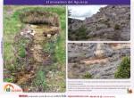 ruta el manadero del aguisejo desde villacadima municipio de cantalojas en guadalajara9