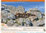 ruta mirador de ordiales desde pandecarmen en asturias12